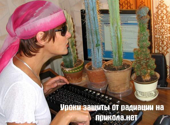 radiatsiya_cactus.jpg